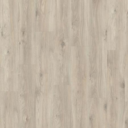 Sierra Oak 58239
