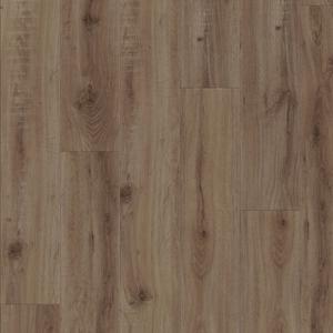 European Oak 2870