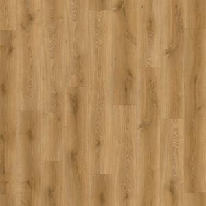 Traditional Oak 1832