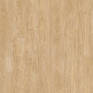 Laurel Oak 51282