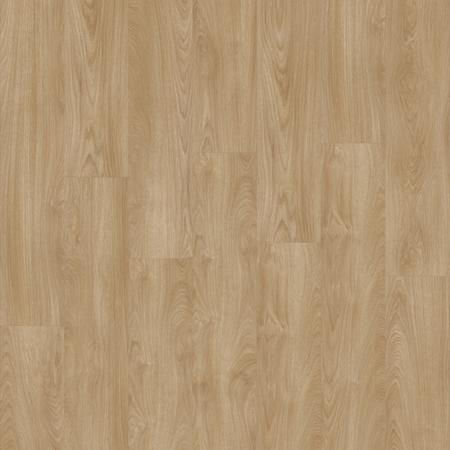 Laurel Oak 51824