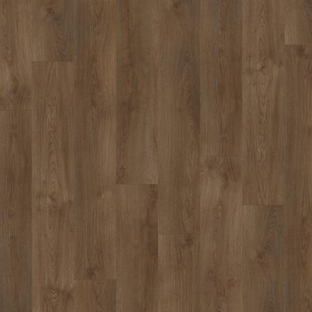 Sherman Oak 22841